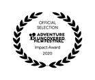 Official Selection Impact